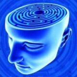 Schmann_Meditasyon